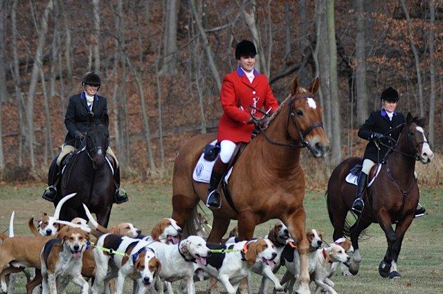 Foxhunting Creed