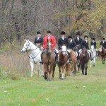 Third field, Rocky Fork Hunt blessing 2014